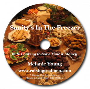 Sanity is in the Freezer CD Art with Shadow
