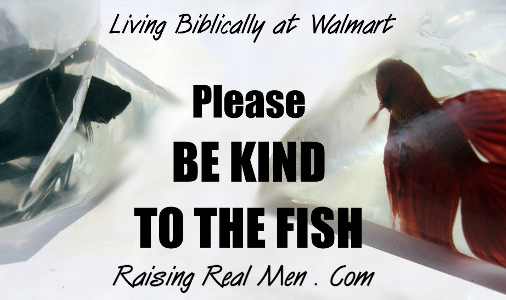 Blog - Be Kind to Fish - H