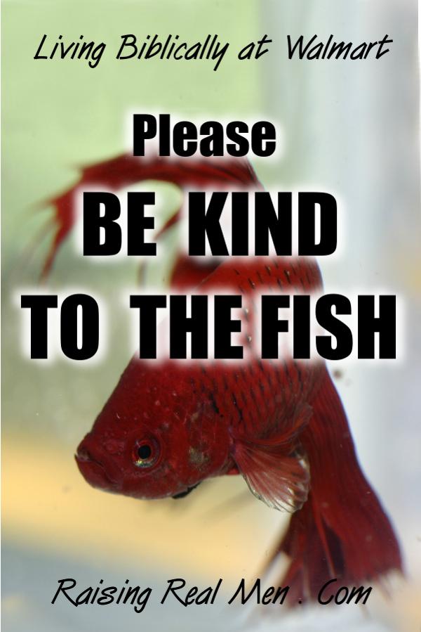 Blog - Be Kind to Fish - V