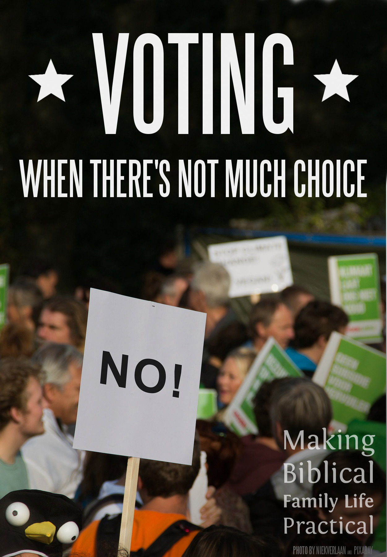 MBFLP 120 - Voting V