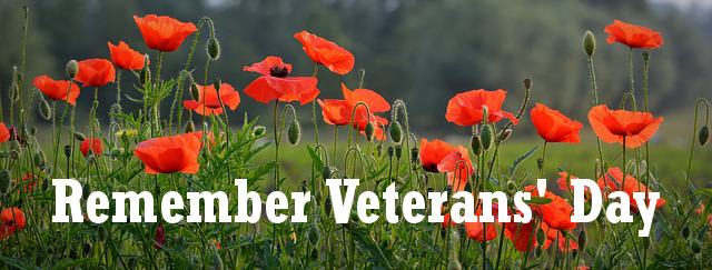 veterans-day-header